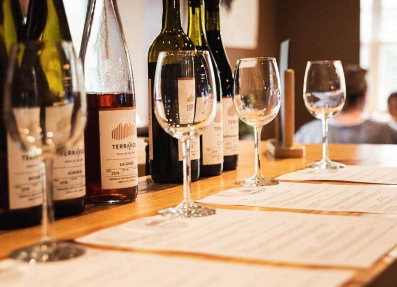 Gestion de cave à vin : les meilleurs logiciels et applications
